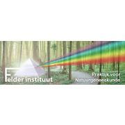 Felder Instituut
